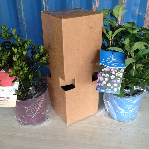 custom-box-for-shipping-plants.jpg