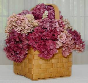 Hydrangeas colored with Ritz dye.