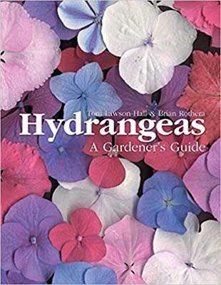 hydrangeas-a-gardners-guide-compressor-1-1.jpg