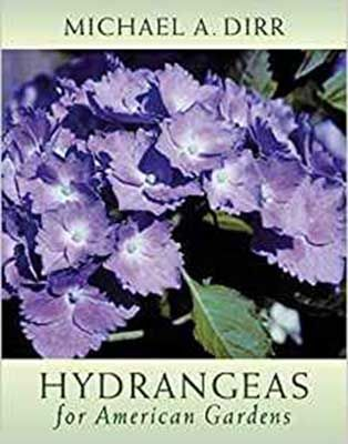 hydrangeas-of-american-gardens-compressor-1-1.jpg
